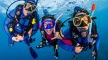 Budget Reef Cruise Resort Divers