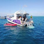 Great Barrier Reef Half Day Tour